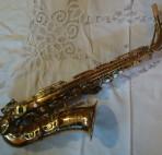 king-marigaux-alto 1